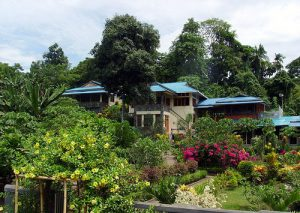 Bunaken Accommodation