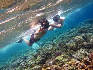 things to do in menjangan island