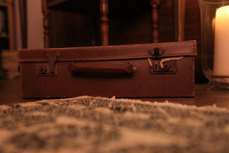 luxury watch travel cases